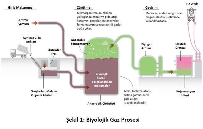 biyolojik_gaz_prosesi_blog_gorseli-2